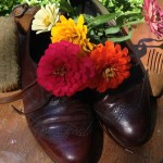 Polished Shoes and Zinnias