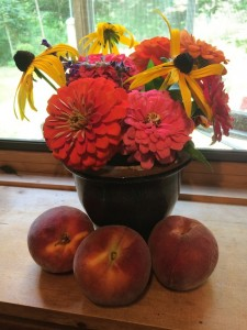 Zinnias and Peaches on the Kitchen Windowsill